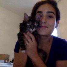 Female Professional, Isabel, seeking flatmate in NW8
